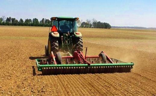 Planting in field
