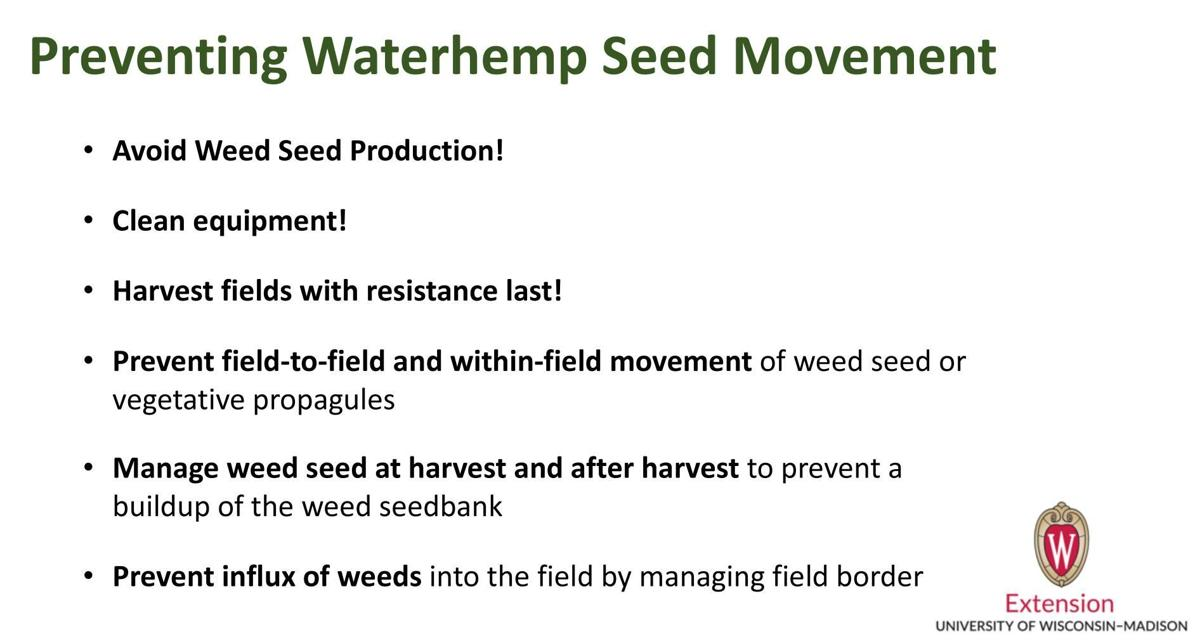 Preventing Waterhemp Seed Movement