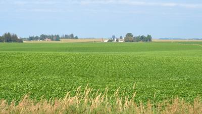 Financial plan farm scene