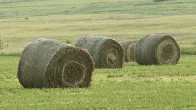 Round bale storage issues