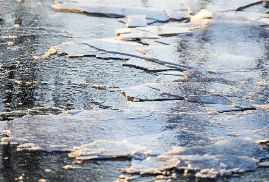Fractured ice sheets on Lake Mendota