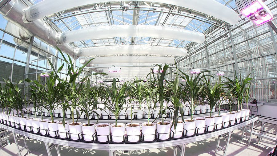 Nebraska's Greenhouse Innovation Center