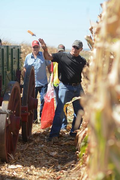 National Corn Husking competition returns to Nebraska