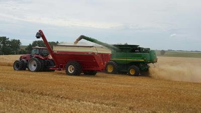 harvesting pic