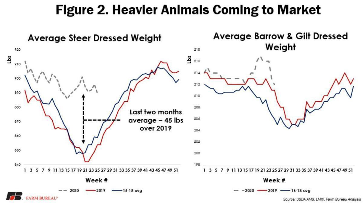 Figure 2. Heavier Animals Coming to Market