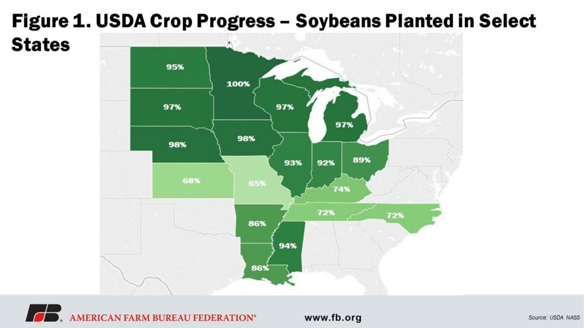 Figure 1. USDA Crop Progress soybeans
