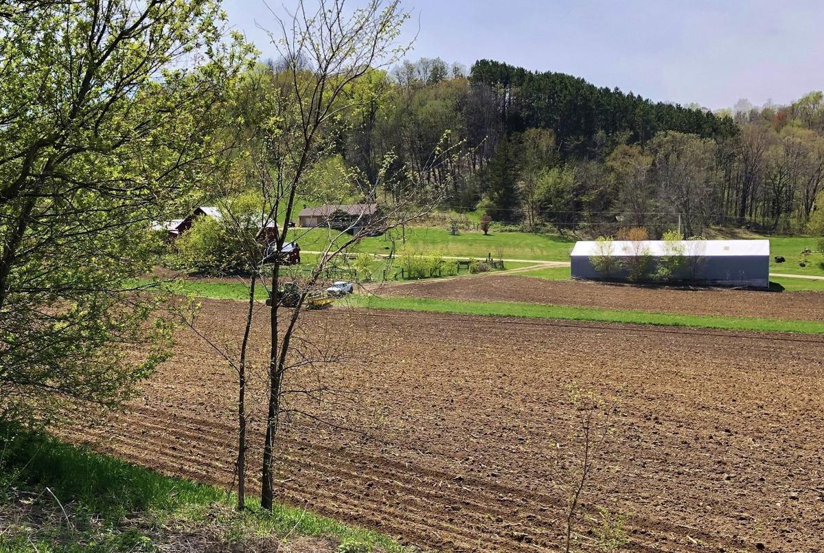 Farmer plants corn in field
