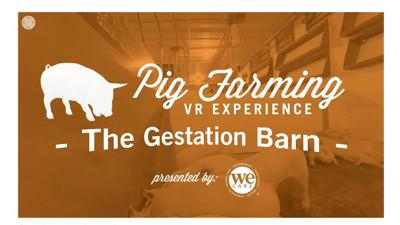 National Pork Board VR series