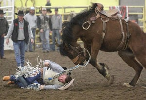 The 39th Annual CSI Intercollegiate Rodeo Starts Tonight March 6