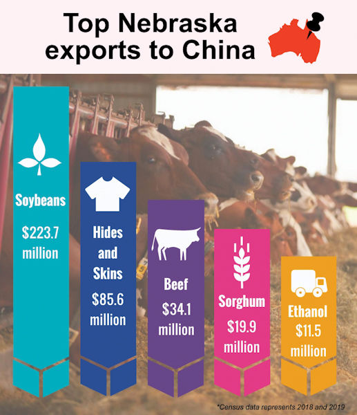 China beef exports infographic
