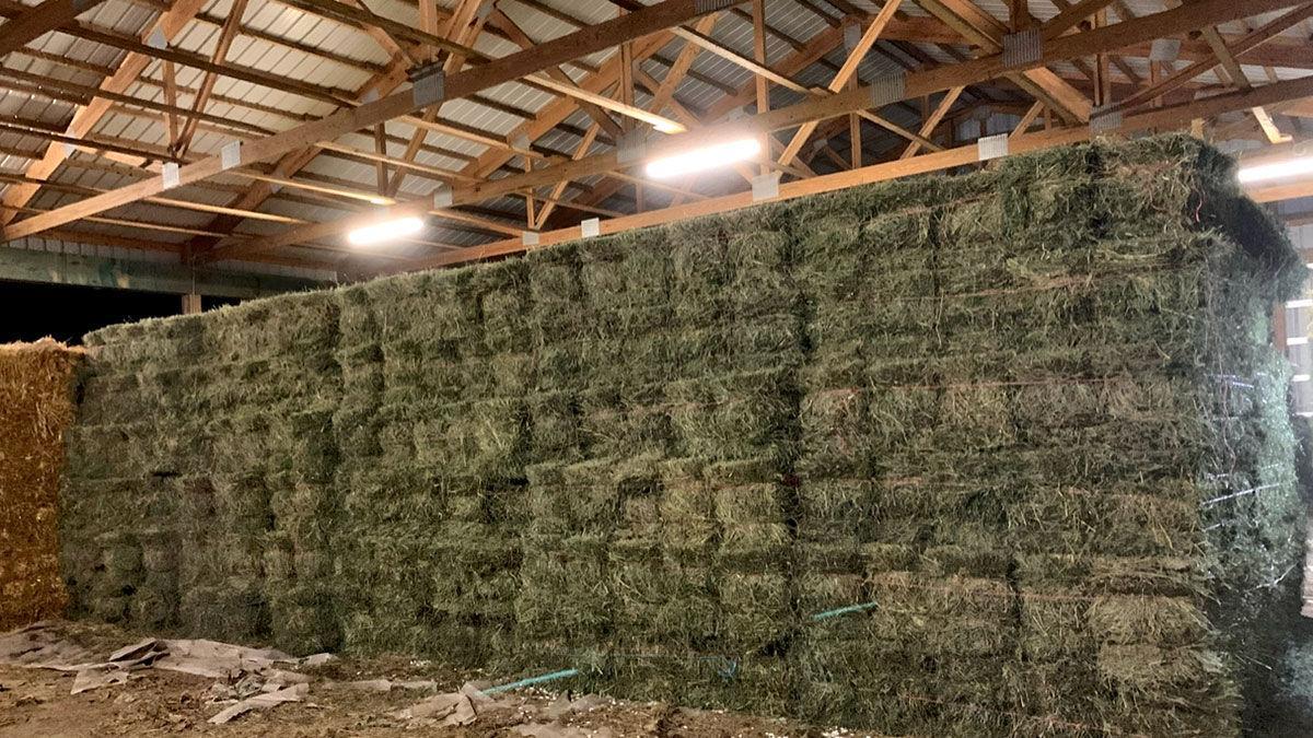 Matt Gehrke hay storage
