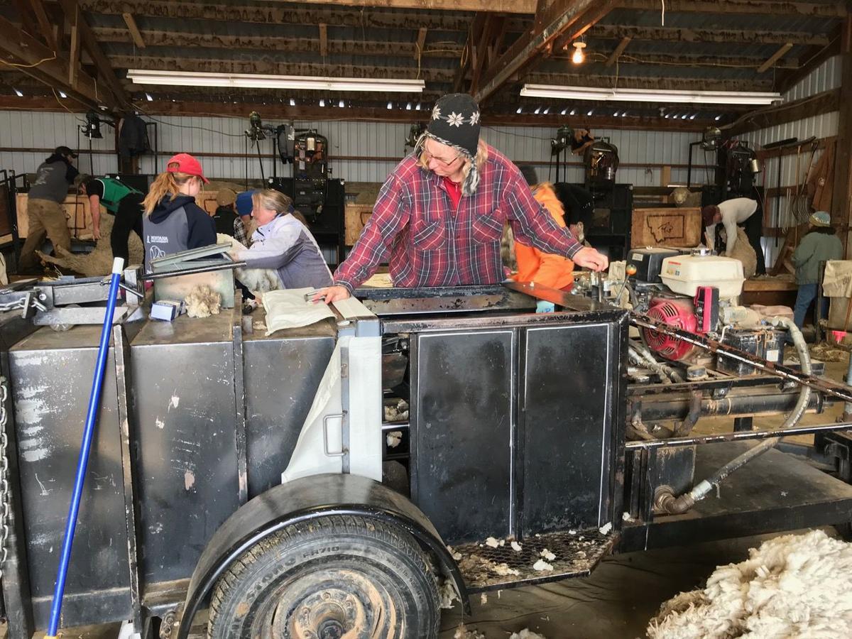 Cheryl Schultz loads wool baler