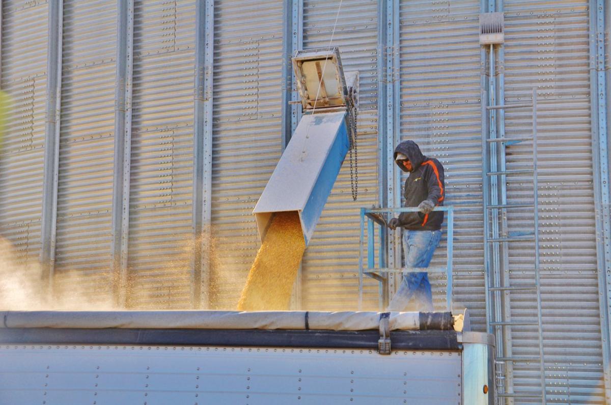Brent Foltz loads a semi-tractor trailer