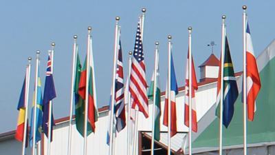 International trade flags