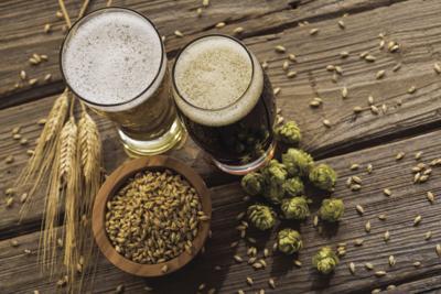 Beer barley and hops