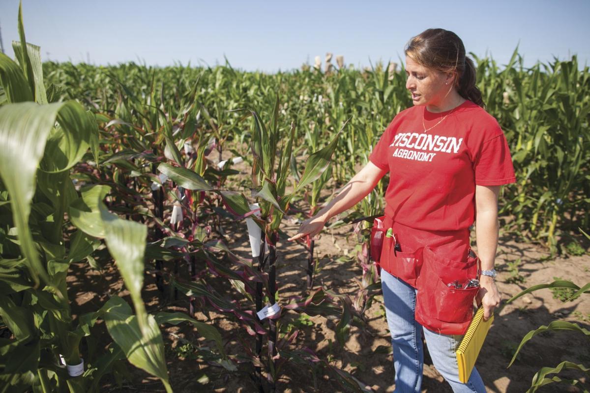 Natalia de Leon in trial corn field