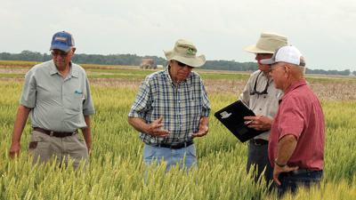 Southern Illinois University Wheat tour