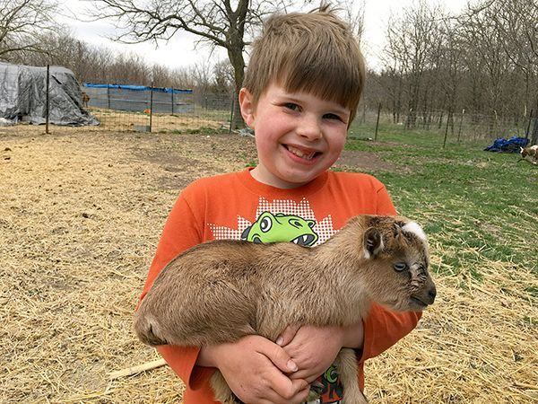 Levi McKenzie Udderly Naked kid goat