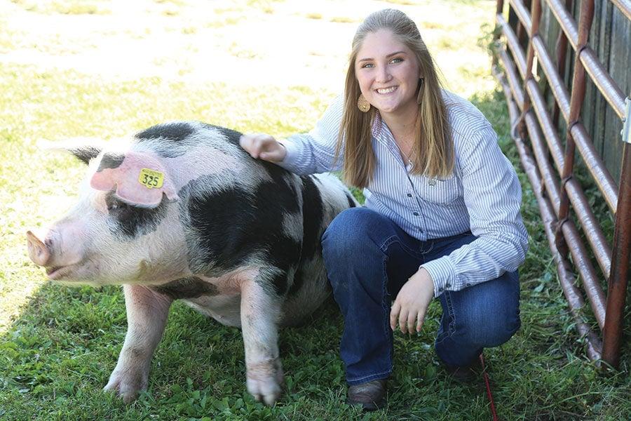 Mariah Murphy show pigs