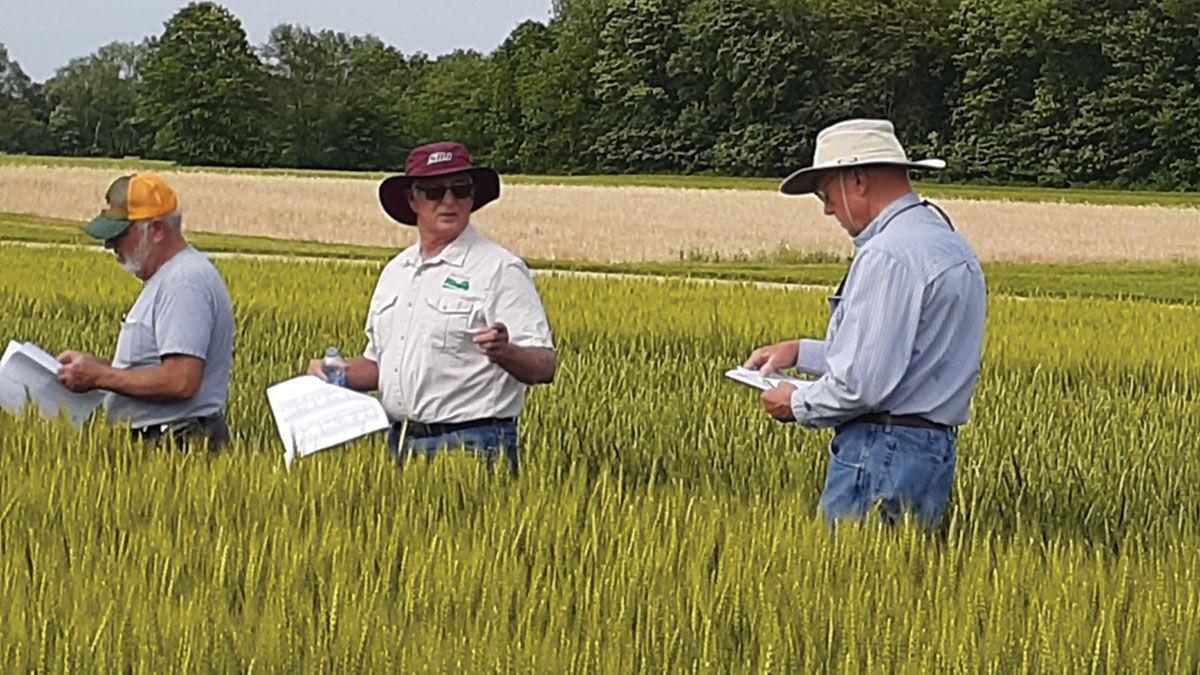 tour of wheat fields in Illinois