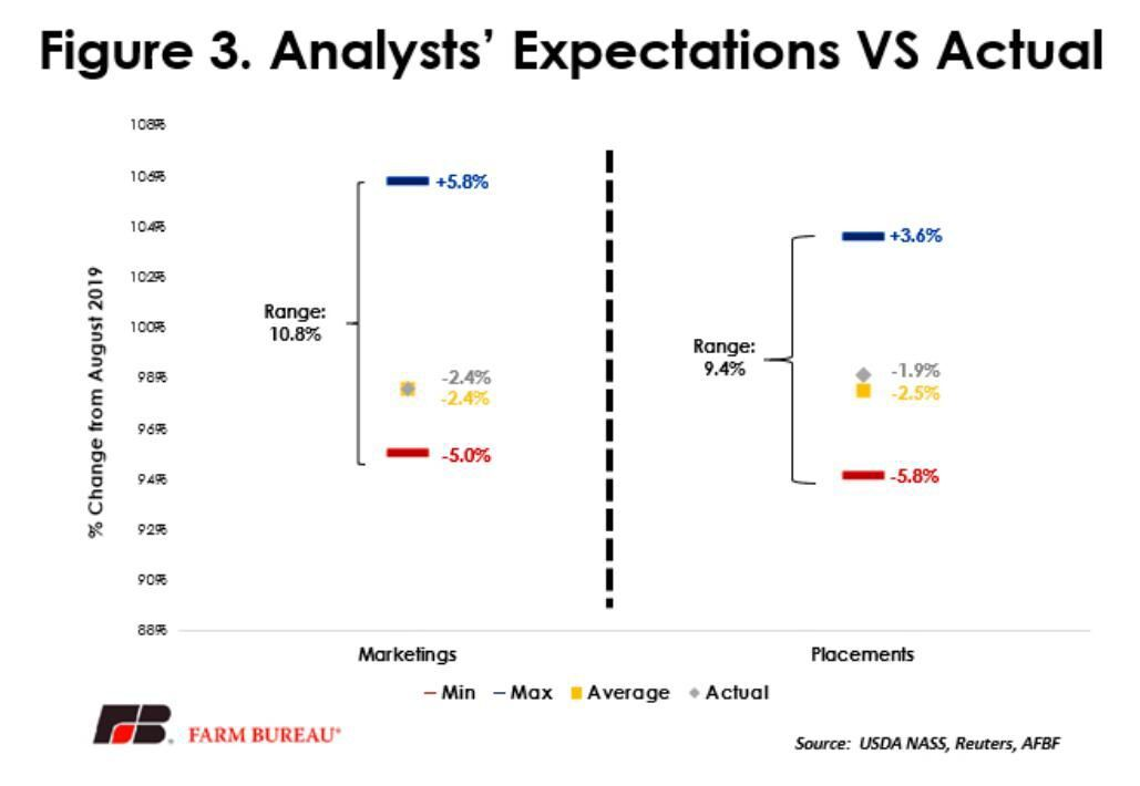 Analyst expectations vs actual