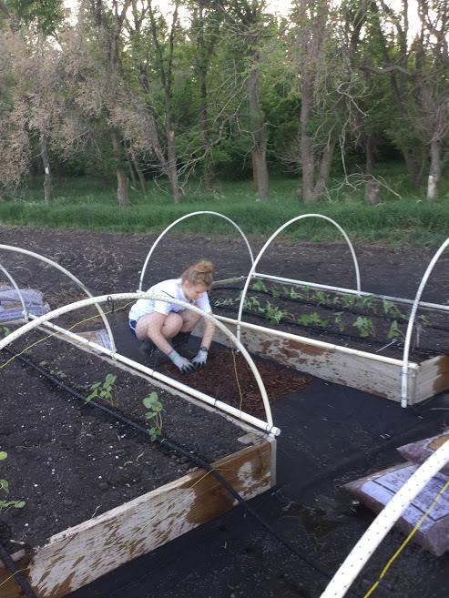 Christina Bingham setting up her garden