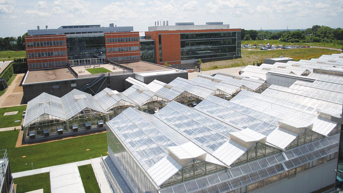 Greenhouses at the Donald Danforth Plant Science Center