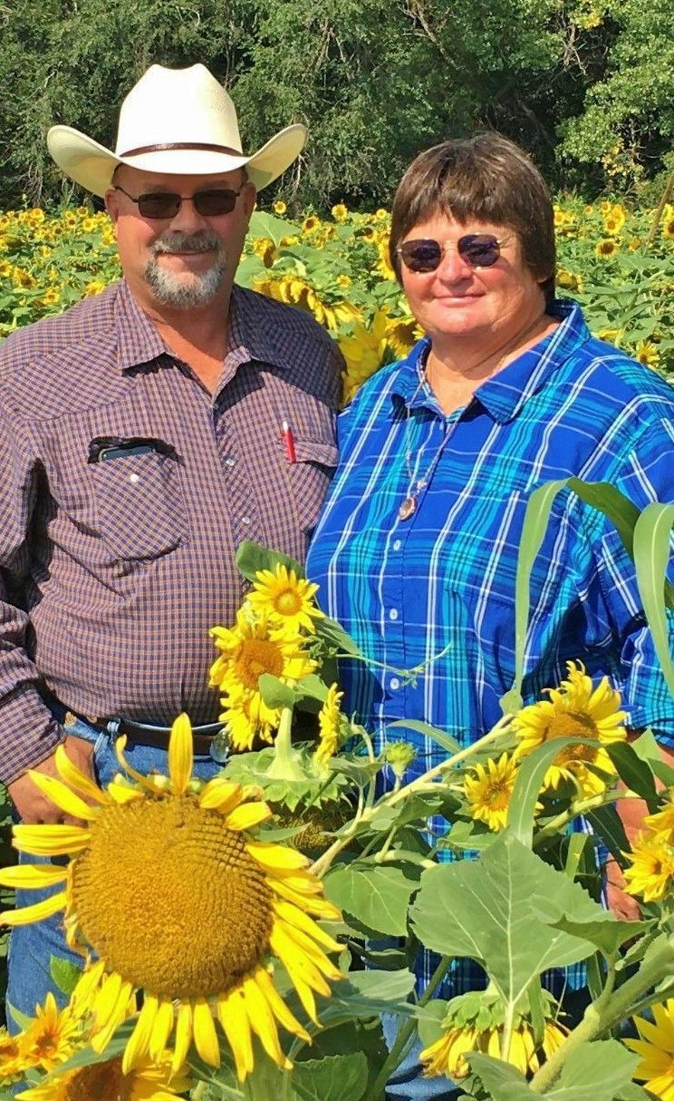 Jimmy and Ginger Emmons in sunflower field