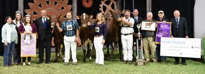 2019 Milking Shorthorn Grand Champion and Reserve Grand Champion