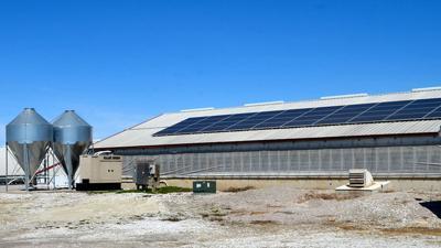 Solar panels on hog building