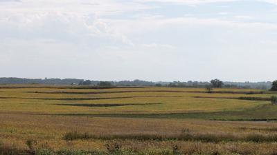 Watershed demo prairie strips