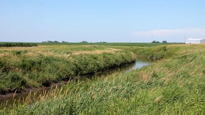 vegetative buffers along public waterways