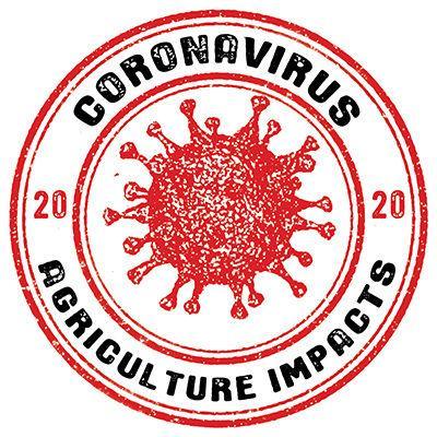 COVID ag impact logo