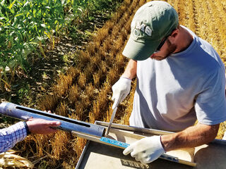 Farming practices cover crops