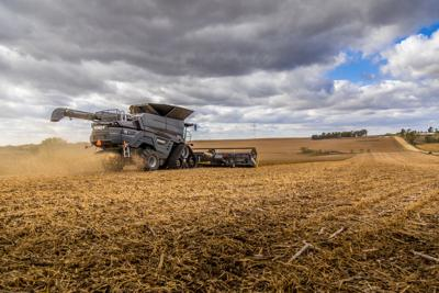 Fendt Ideal 8T harvests soybeans near Sioux City, Iowa in October 2019. Photo by AGCO.