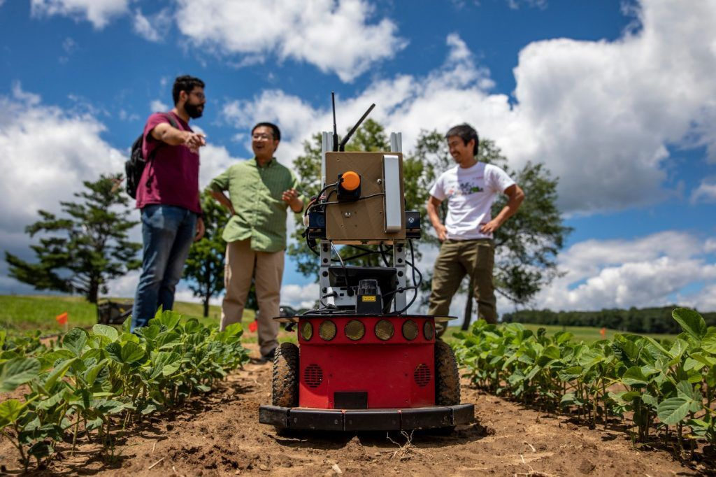 Researchers use robots