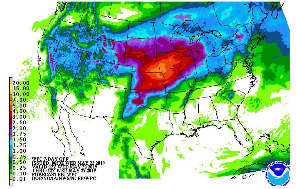 Forecast calls for heavy rain