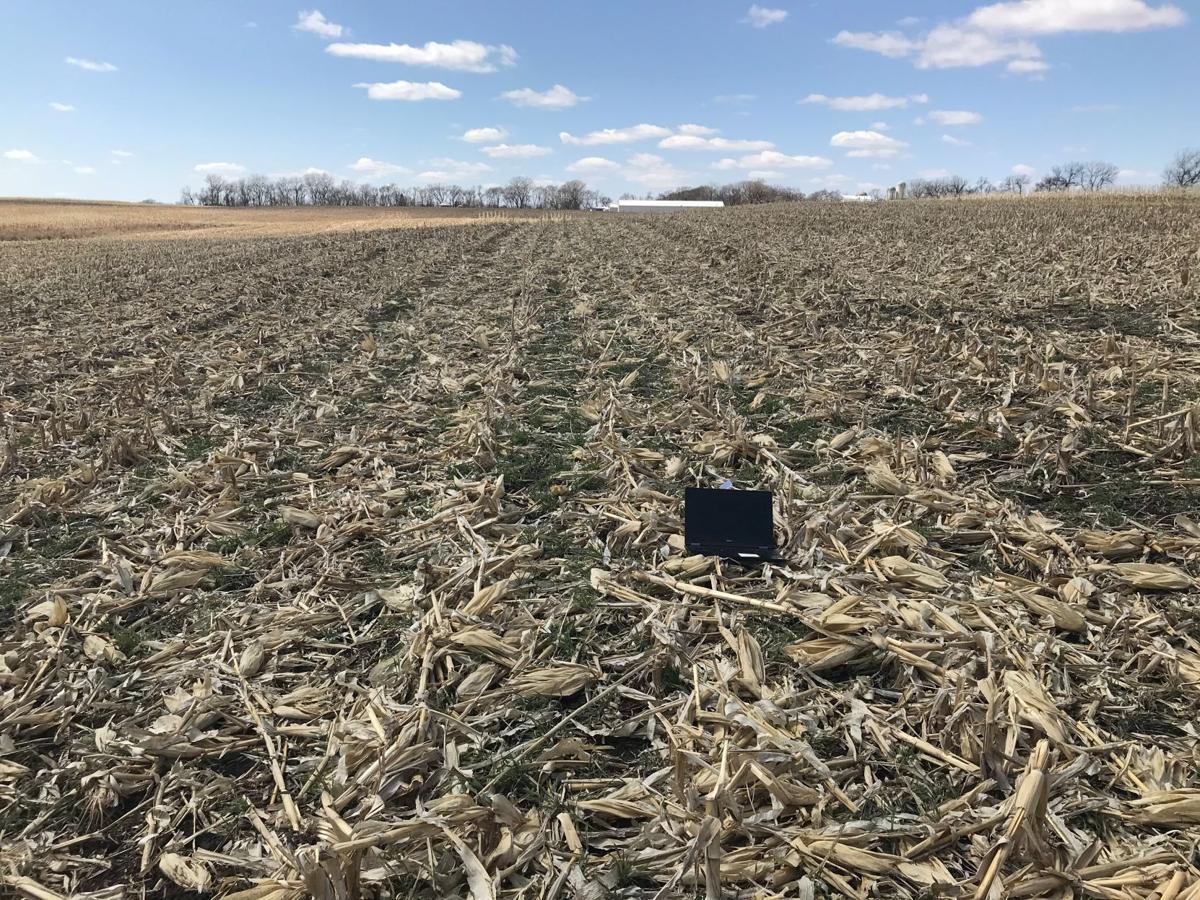 Remote field view