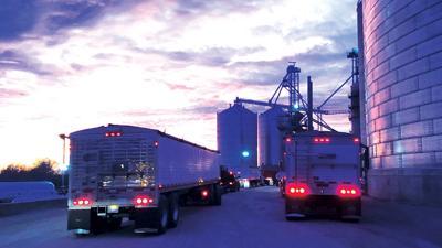 Grain trucks wait their turns at elevator