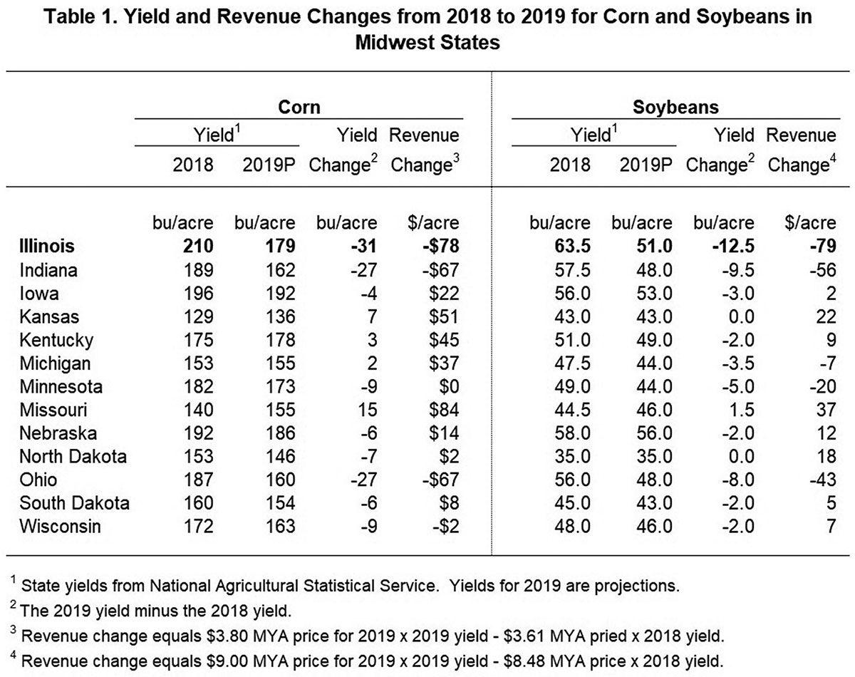 Revenue changes from 2018 to 2019