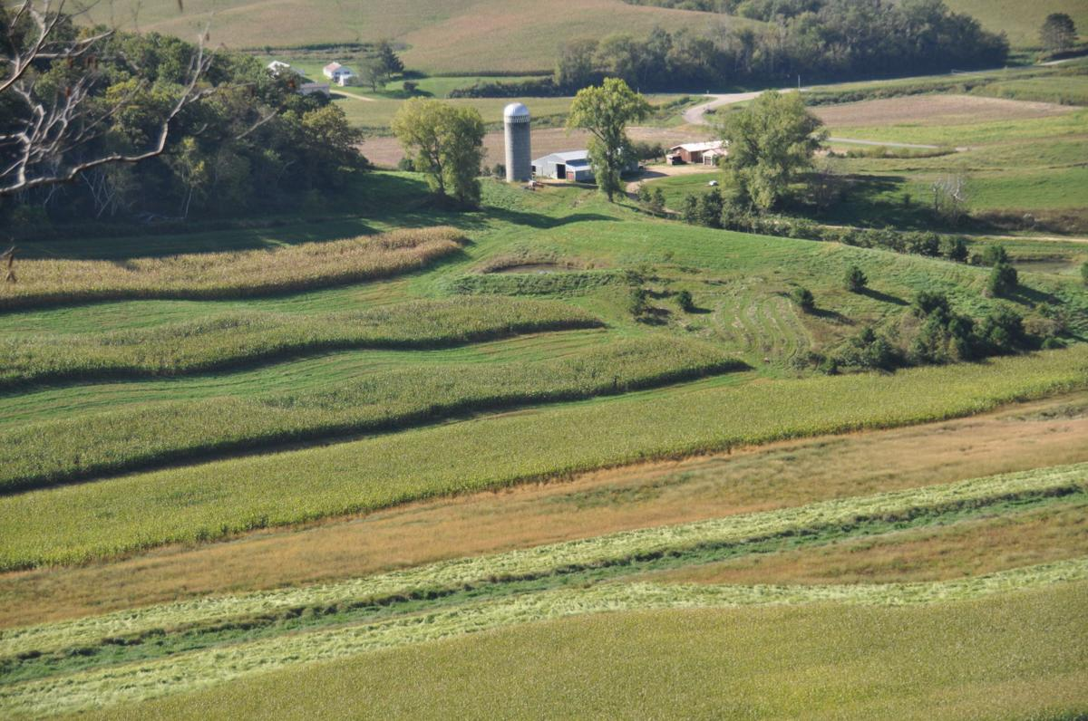 Bulman farm overview