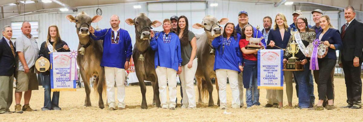 2020 Southwestern National Brown Swiss grand champion and reserve champion