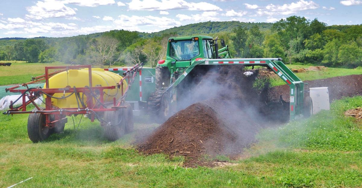 Steam from three-week-old compost rises