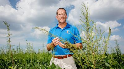 Aaron Hager with waterhemp.