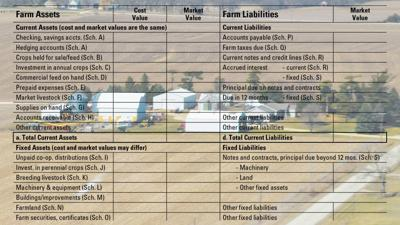 Balance sheet with farm scene background