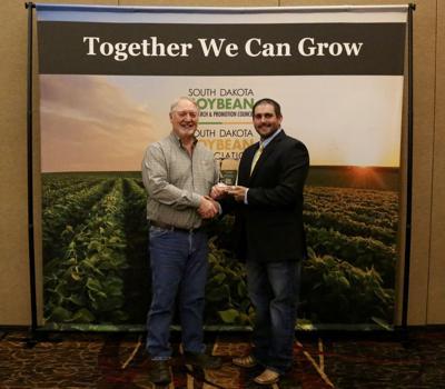 Soybean yield winner