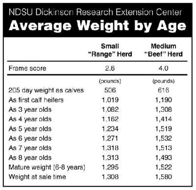 Beef Talk: Finding the right cow size no simple task | Midwest ...