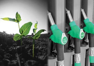 Midwest soybean biofuel