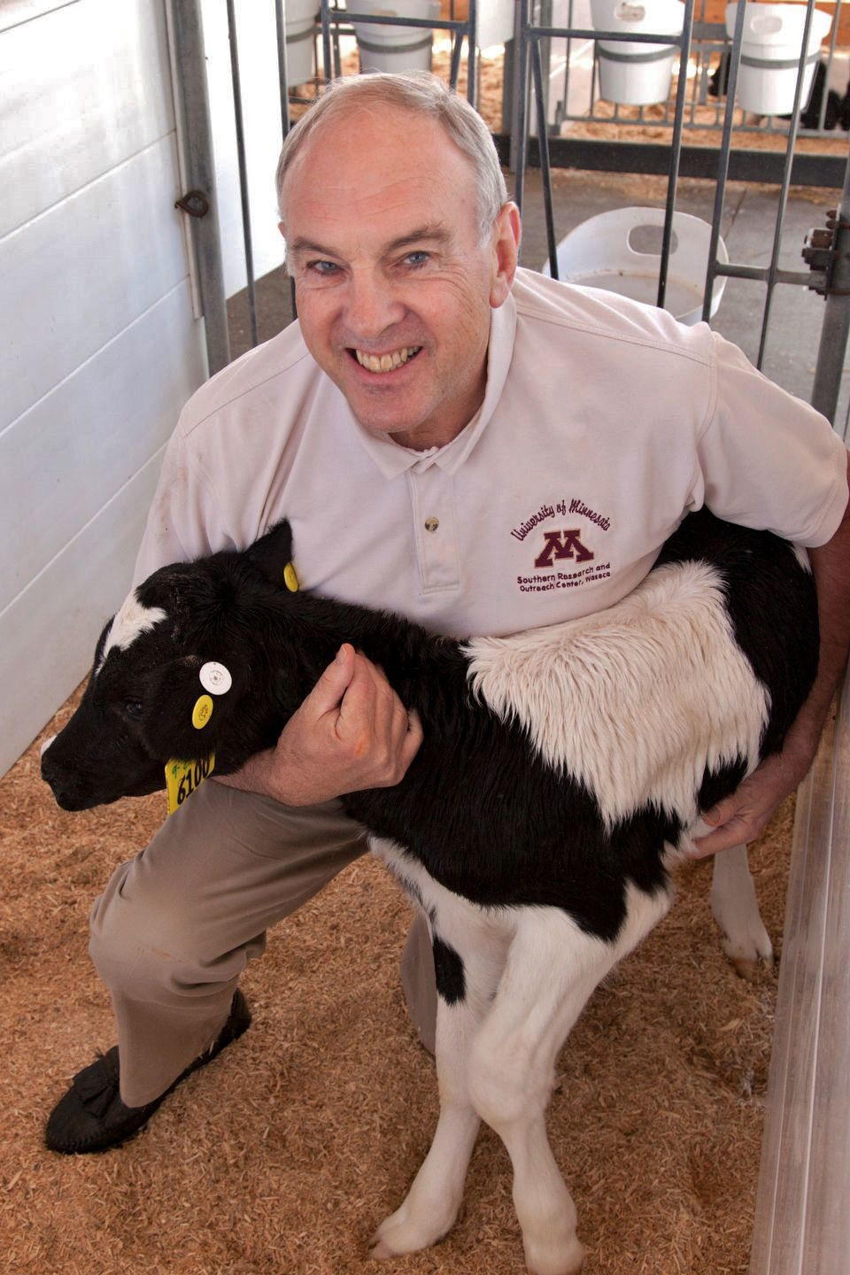 Use nutritional strategies for starting calves | Business