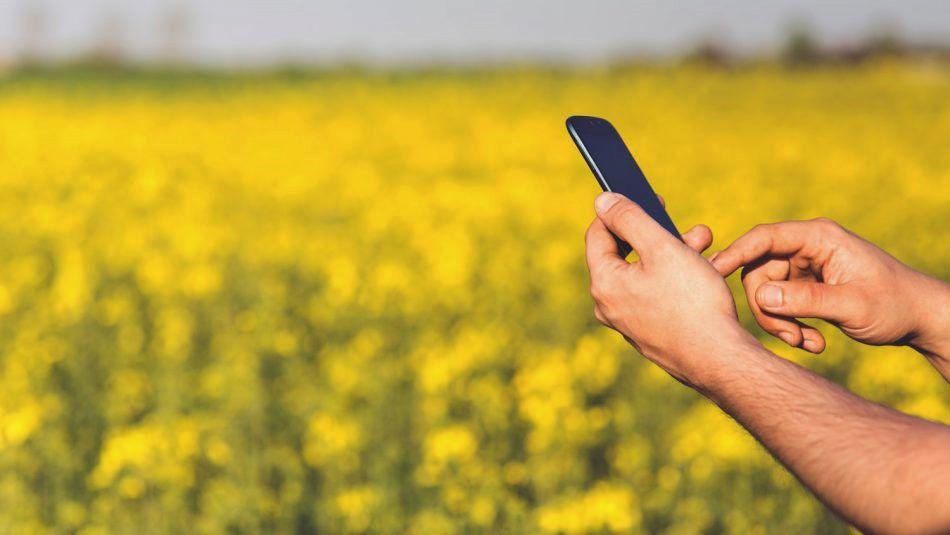 Grower holding cellphone